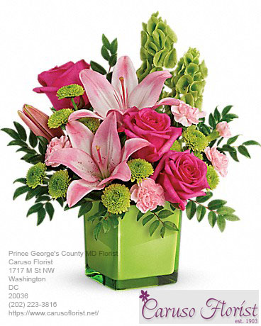 Florist Prince George's County