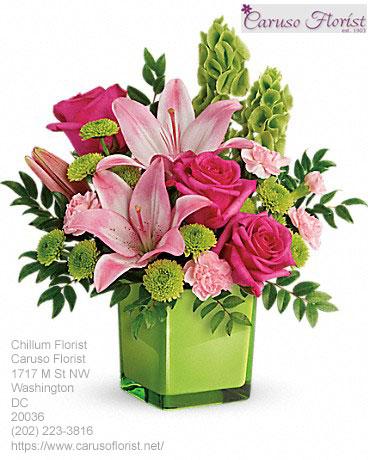 Florist Chillum